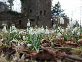 Finlagan Castle