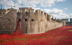 2014's Iconic Exhibition - Blood Swept Lands and Seas of Red